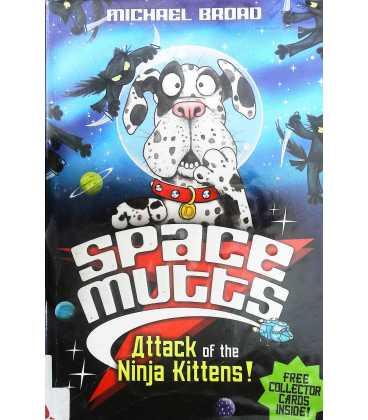 Attack of the Ninja Kittens!