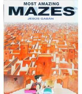 Most Amazing Mazes