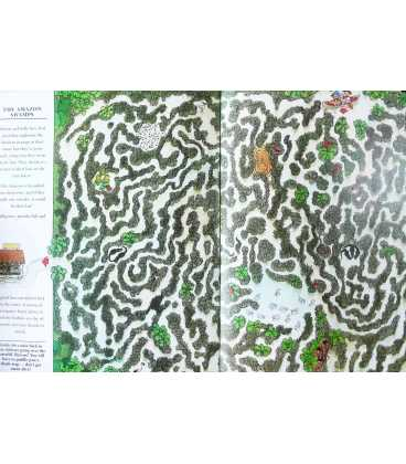 Most Amazing Mazes Inside Page 2