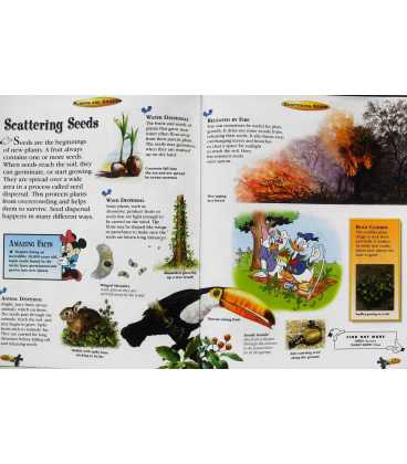 The Wonderful World of Knowledge: Plants are Amazing Inside Page 1