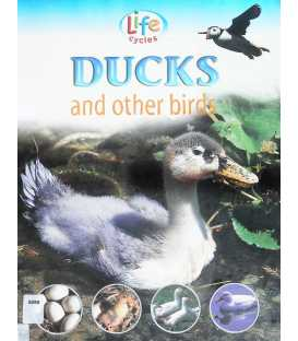 Ducks and Other Birds (Life Cycles)