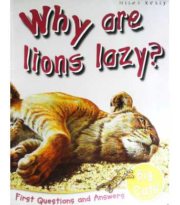 Big Cats: Why Are Lions Lazy? (First Questions And Answers)