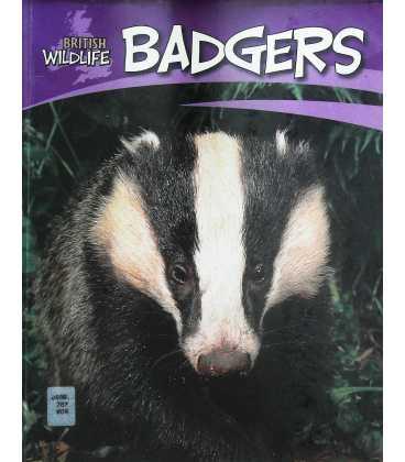 Badgers (British Wildlife)