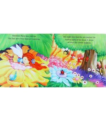 Sunshine Fairy (Glitter Fairies) Inside Page 2