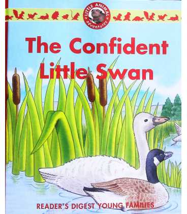 The Confident Little Swan
