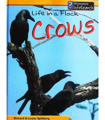 Life in a Flock - Crows
