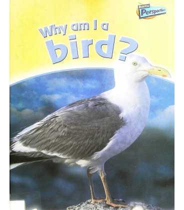 Why am I a Bird?
