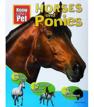 Know Your Pet Horses and Ponies
