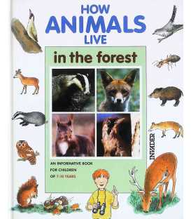 How Animals Live in the Forest