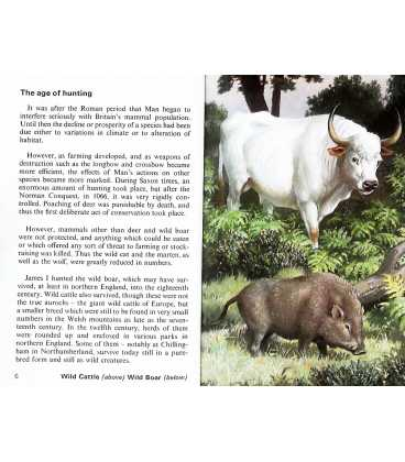 Wild Life in Britain (Conservation) Inside Page 2